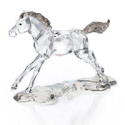Νεαρό άλογο συλλεκτικό Swarovski scs 2014